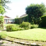 rear garden pic 5