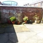 rear yard pic 2