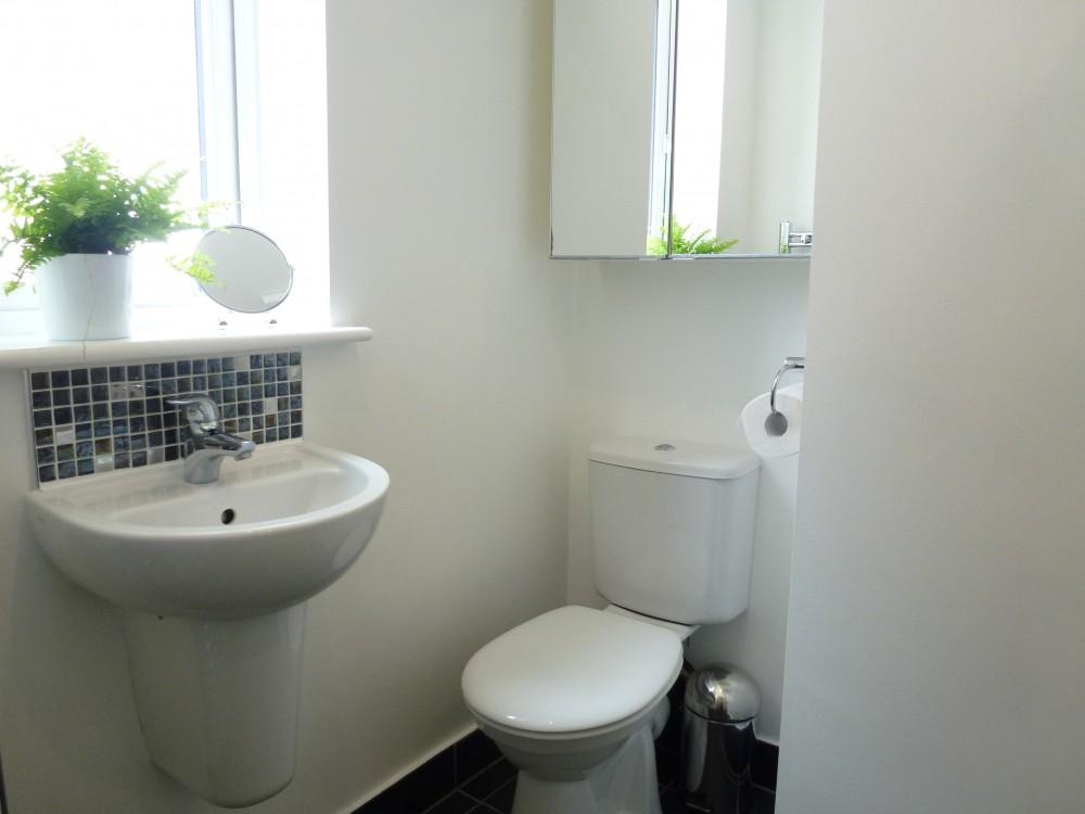 Ground Floor Shower Room Pic 1